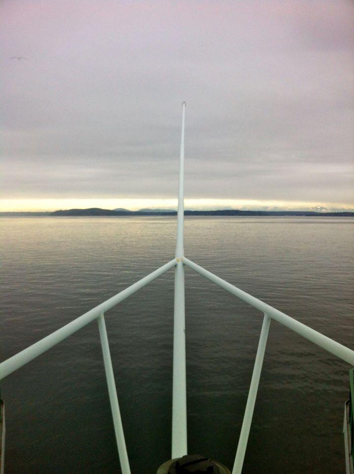 ferrybainbridge